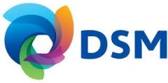 Logo:DSM
